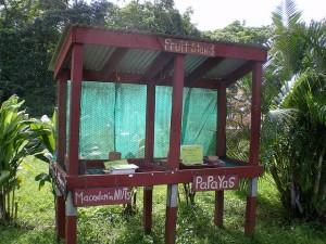 Hawaiian stand